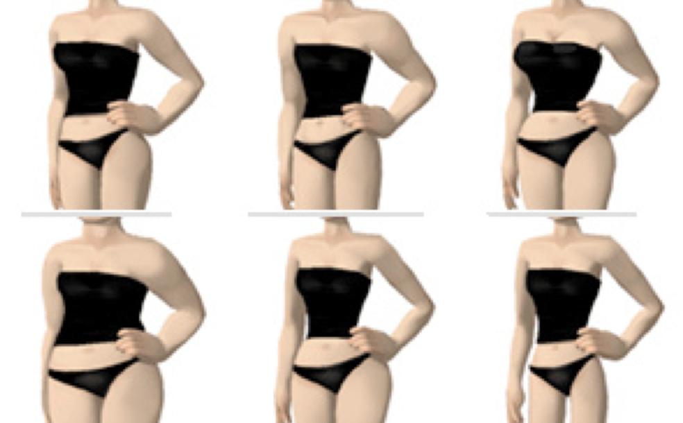 Die Drei Typen Des Weiblichen Körperbaus Und Wie Dieser Das Abnehmen Beeinflusst - Teil 1 | Sports Insider Magazin