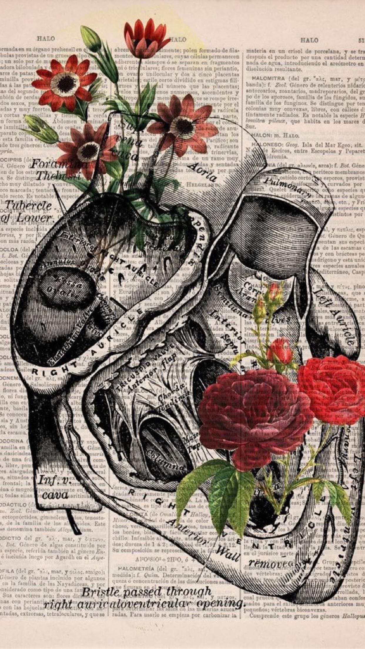 Pin by Gabi Maul on Tattoos | Pinterest | Wallpaper, Artistic ...