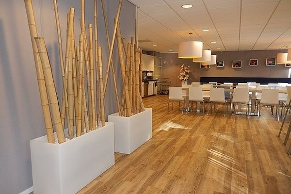 Decorative Bamboo Poles Contemporary Dining Room Open Floor Plan