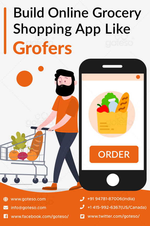 The idea of starting an online grocery business by investing