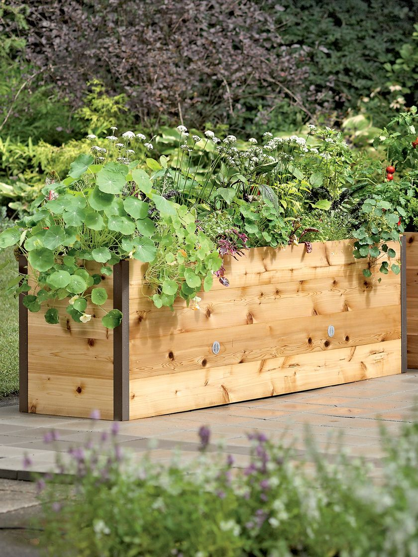 Raised bed 4x8 ft would be ideal. DIY is I can find the