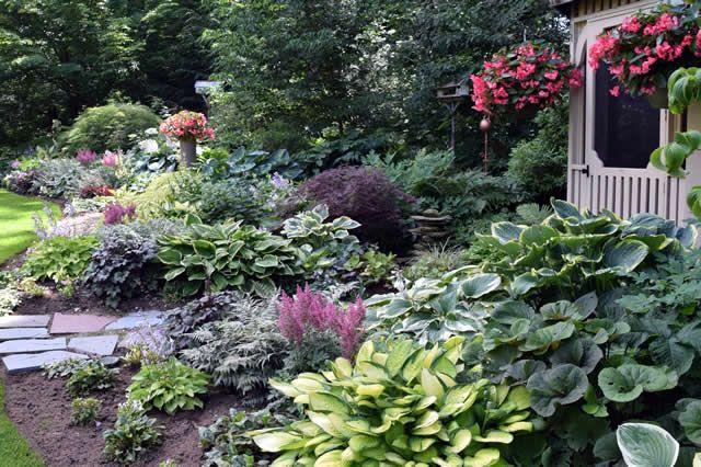 Woodland Retreat | Fine Gardening Magazine