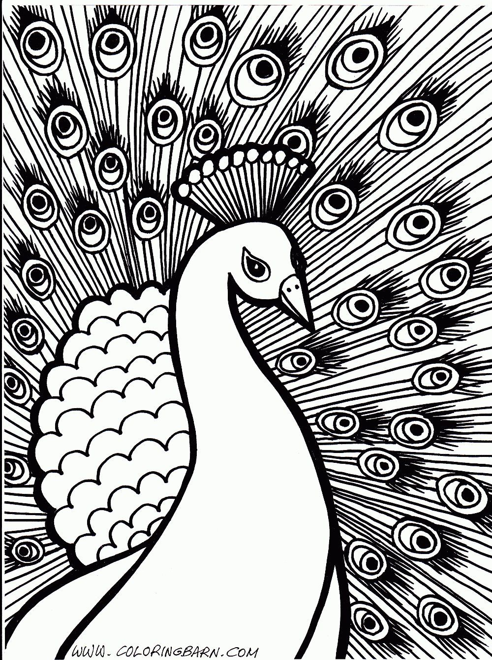 Hard Coloring Pages Of Animals 41 Jpg 1000 1339 Hayvan