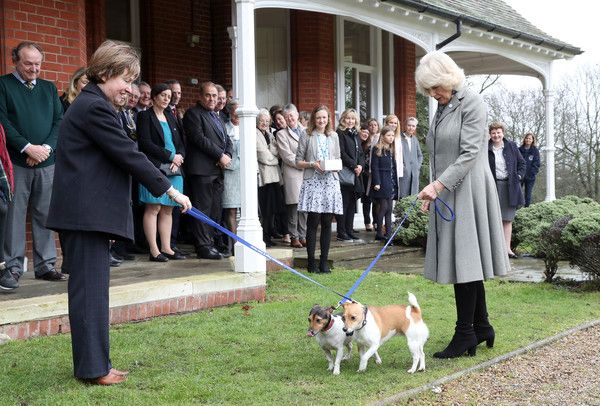 Camilla Parker Bowles Photos Photos The Duchess Of Cornwall Visits Battersea Dogs Cats Home Old Windsor Battersea Dogs Training Your Dog Dog Last Day