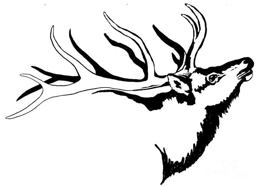 Tribal Tattoo Line Drawing : Tribal elk related keywords suggestions