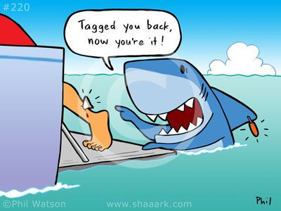 Shark Cartoons And Shark Animations Page 11 Funny Shark Pictures Shark Jokes Sharks Funny