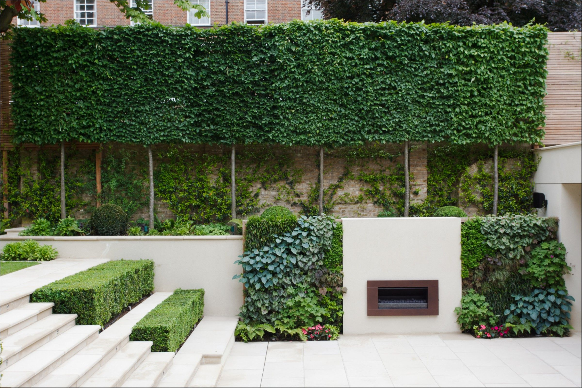 Garden trees for screening  With a beautifullyframed lawn and pleachedtree boundary this
