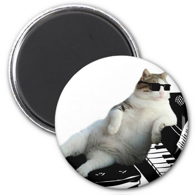Cat piano  cat with sunglasses  cat drawing magnet Affiliate
