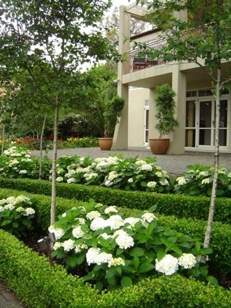 Caroline Wesseling Landscapes Landscape Design Garden Design In Auckland On Landscapedesign Co Nz Garden Design Landscape Design Landscape