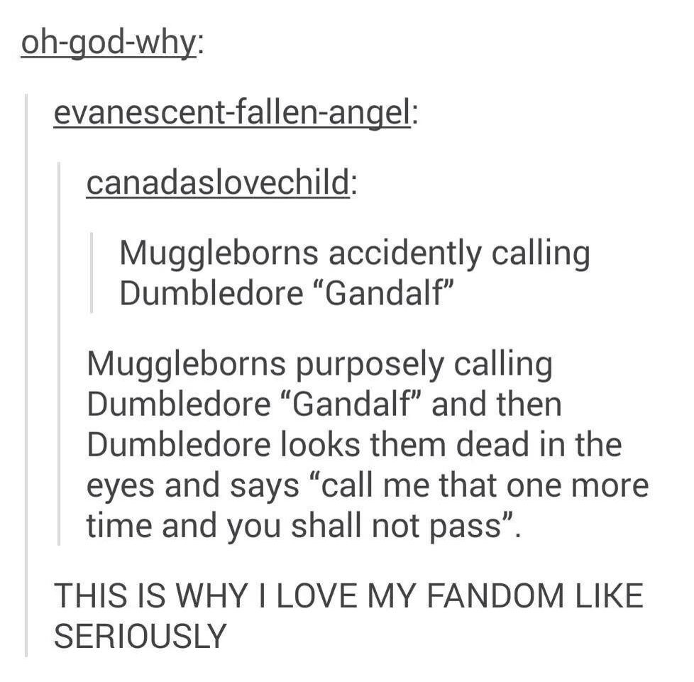 Muggleborns at Hogwarts are my spirit animal<<I love how Dumbledore just casually quotes Gandalf back.