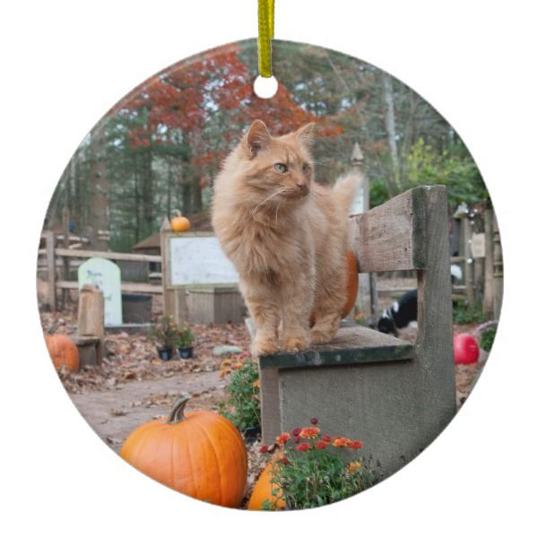 Ginger Cat And Pumpkins Ornament