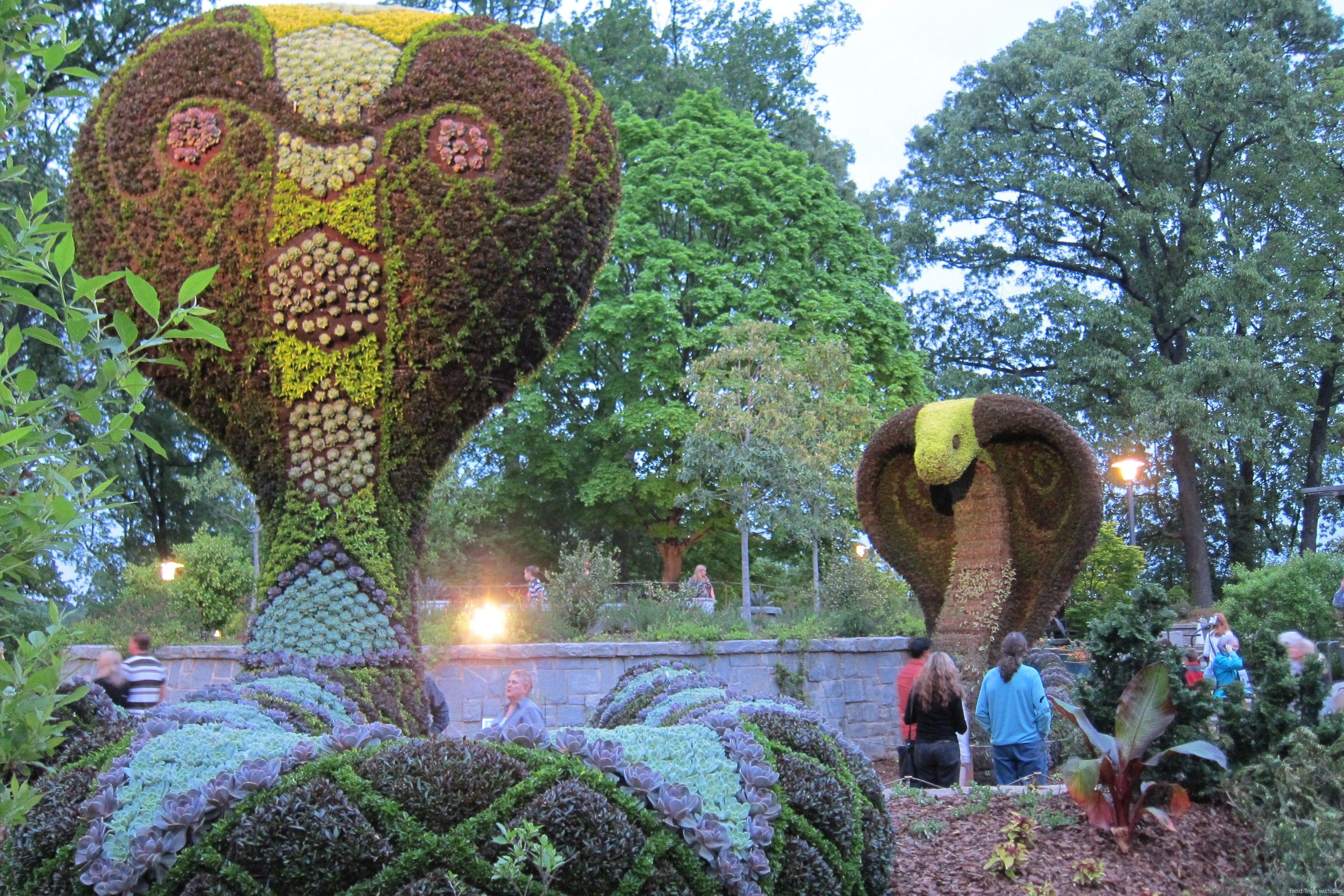 Cobras Gigantes, Atlanta Botanical Garden 2013, Geórgia, USA