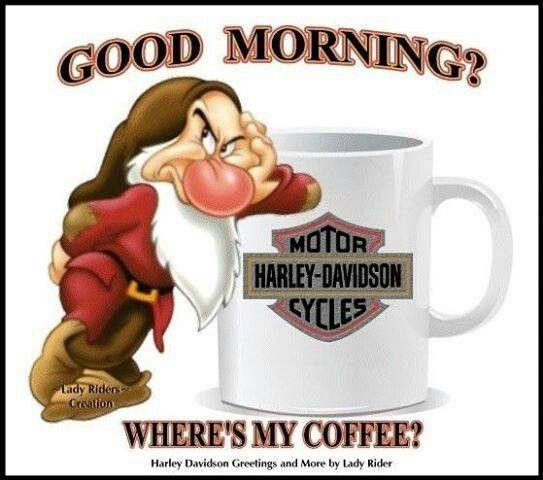 Good Morning Harley Davidson Quotes Harley Harley Davidson