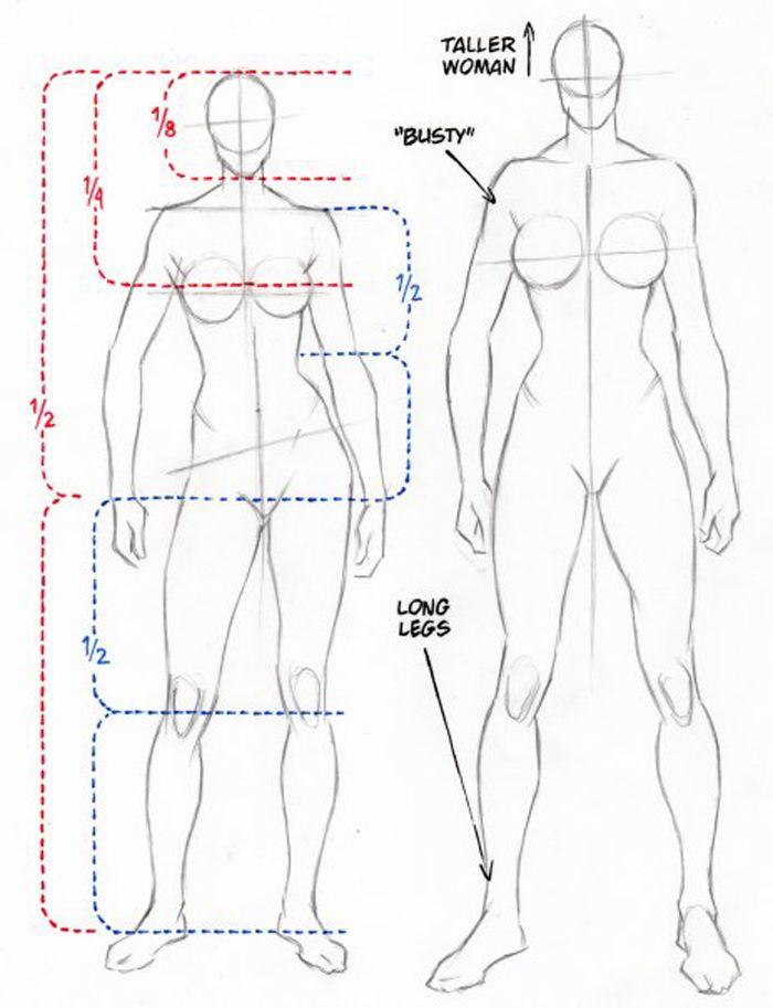 mujer anatomia   Manga Tutorial   Pinterest   Anatomía, Dibujo y ...