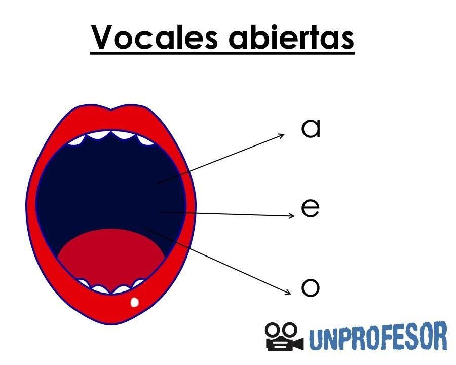 Cuáles Son Las Vocales Abiertas Y Cerradas Con Ejemplos Vocal E Vocales En Español Apuntes De Lengua
