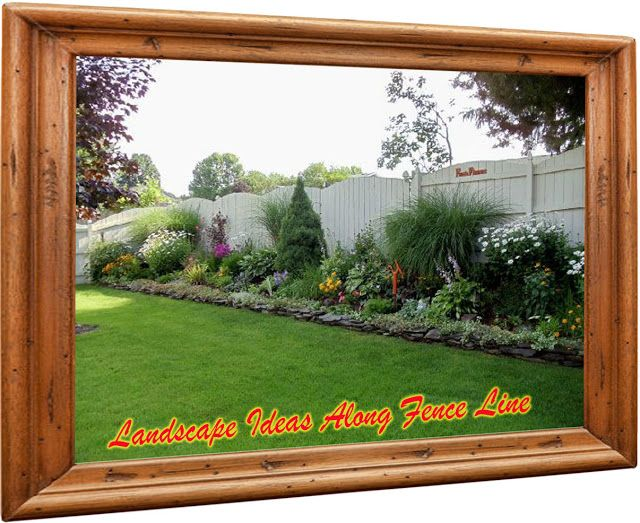 Landscape Ideas Along Fence Line