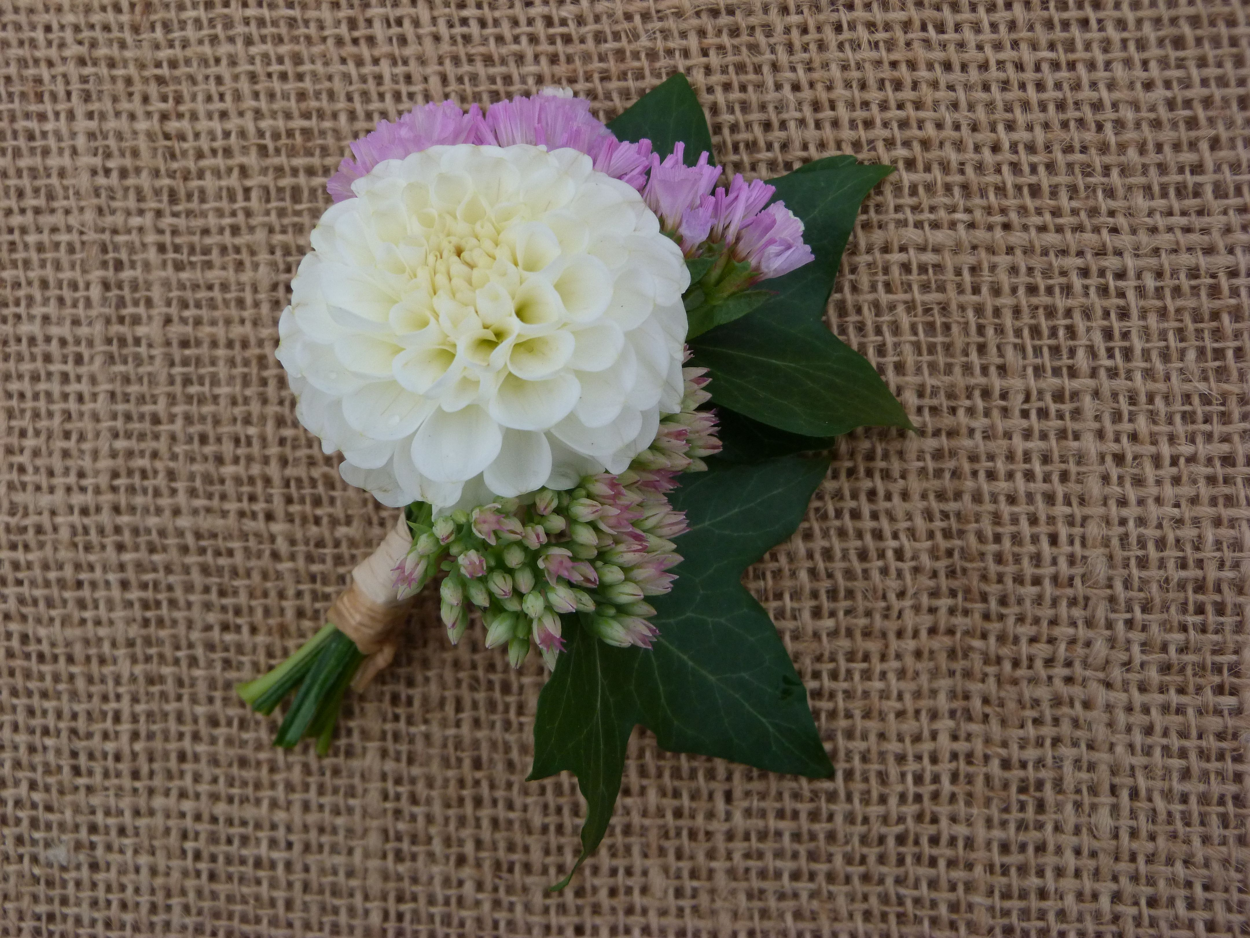 Buttonhole With White Dahlia With Pink Statice Sedum And Ivy Grown