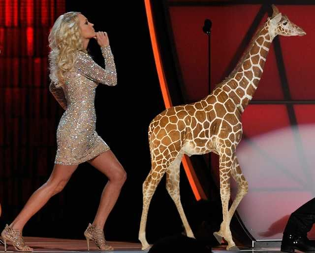 Before Taylor Swift's long boney legs, there was Carrie Underwood.