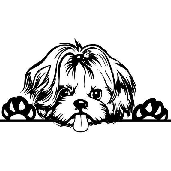 Shih Tzu 15 Peeking Dog Breed K 9 Toy Group Lap Animal Pet Etsy Dog Drawing Animal Drawings Dog Tattoos