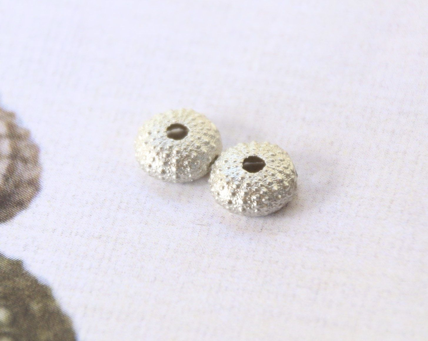 Sea Urchin Earrings. Sterling Silver Seashell Studs, Beach Wedding Bridesmaid Gift. Ocean Nautical Jewelry, Girls Birthday Gift, Modern by apetitesparkle on Etsy