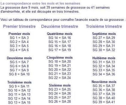 Calendrier Gestationnel.Calendrier Grossese