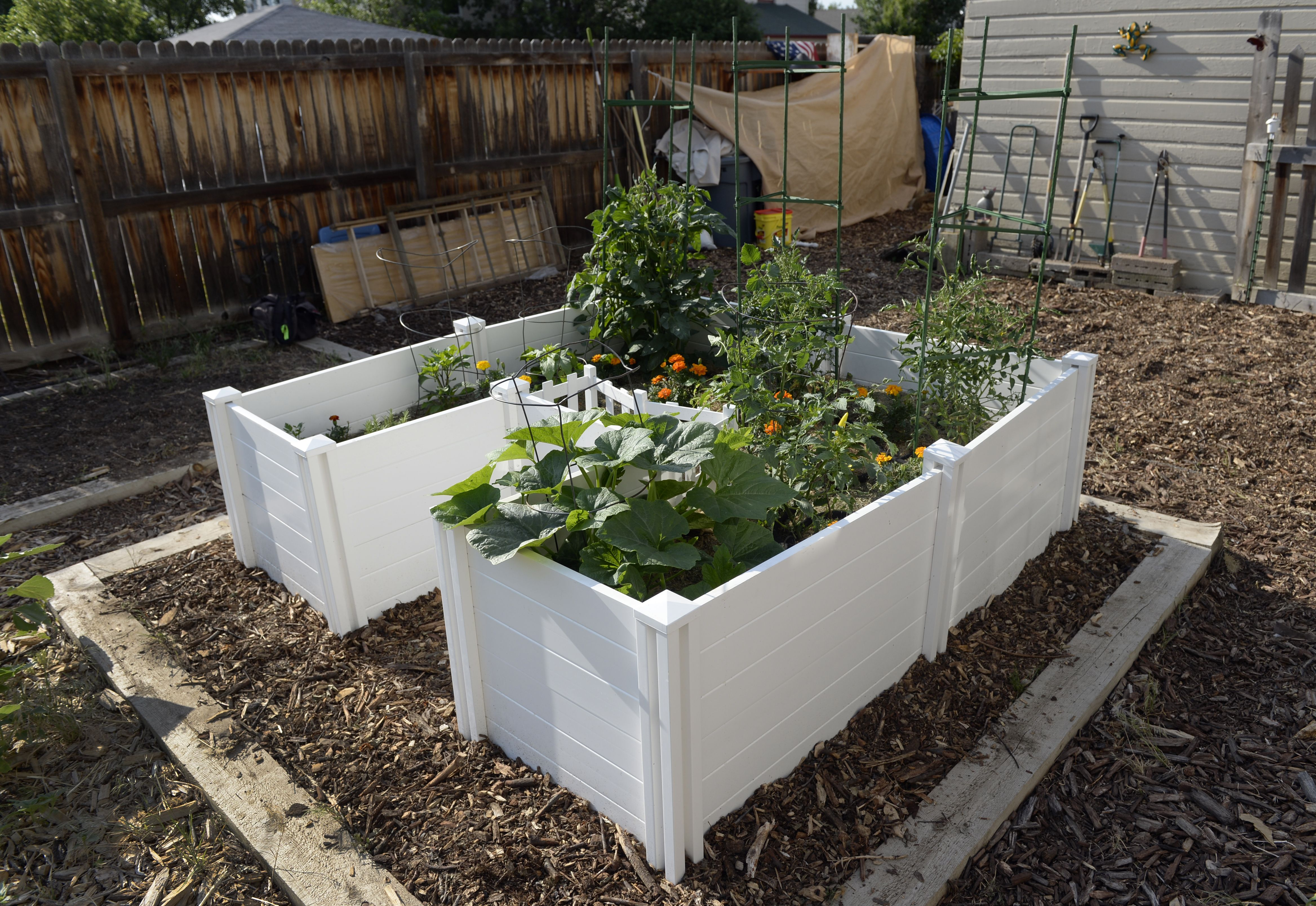 Unlocking a backyard permaculture powerhouse — keyhole ...