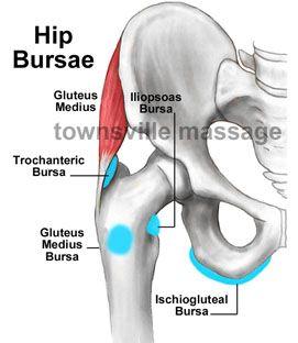 Hip bursa anatomy
