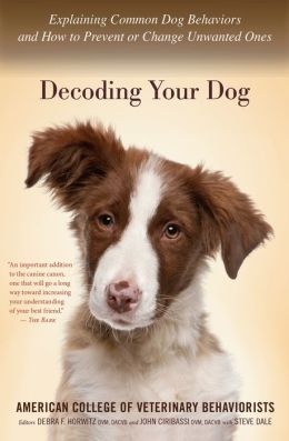 Decoding Your Dog Explaining Common Dog Behaviors And How To