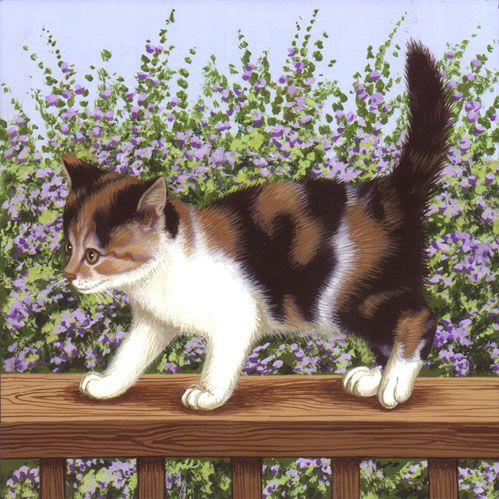 Country Calico Kitten Enjoying the Outdoors.