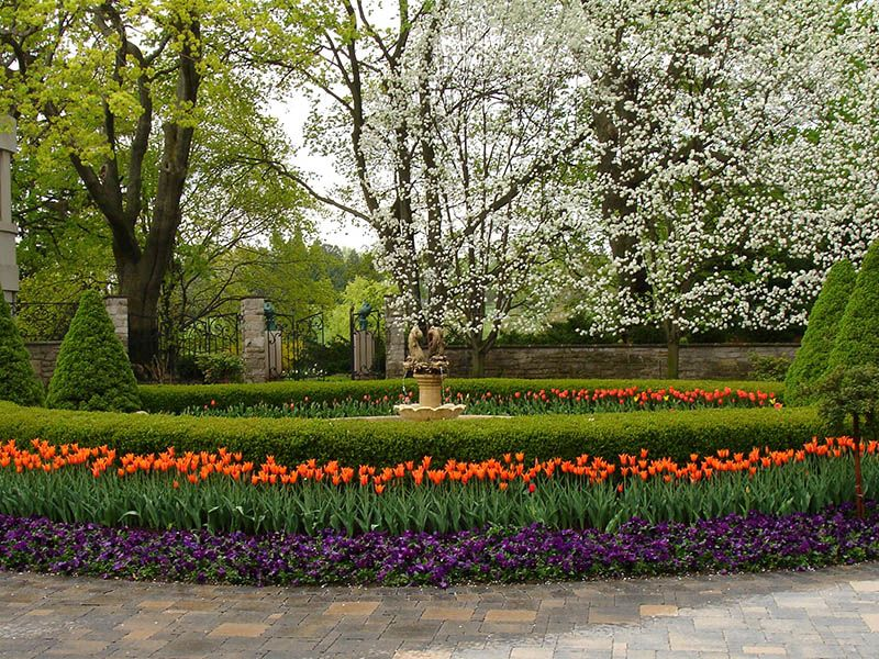 Images Of Driveway Landscaping Bed Including Tulips