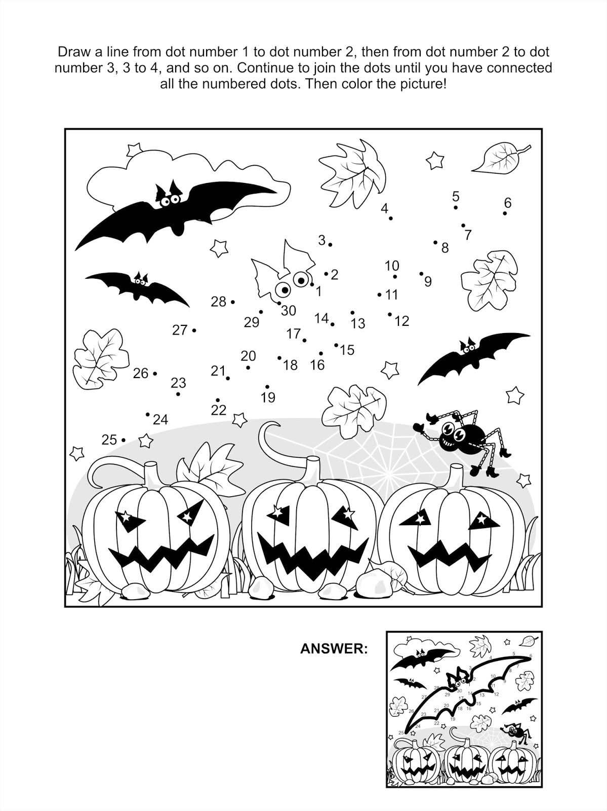 Bat Fact Worksheet