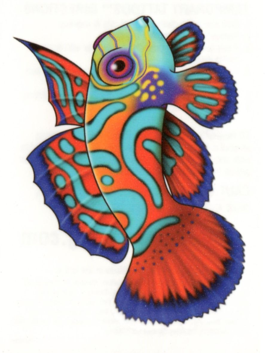 Tribal tropical colorful fish koi temporary tattoo made in usa ...