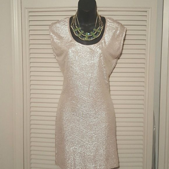 Gold/Sliver Dress Sliver/gold vintage charm dress with peep hole in the back of dress 100% Polyester Vintage Dresses