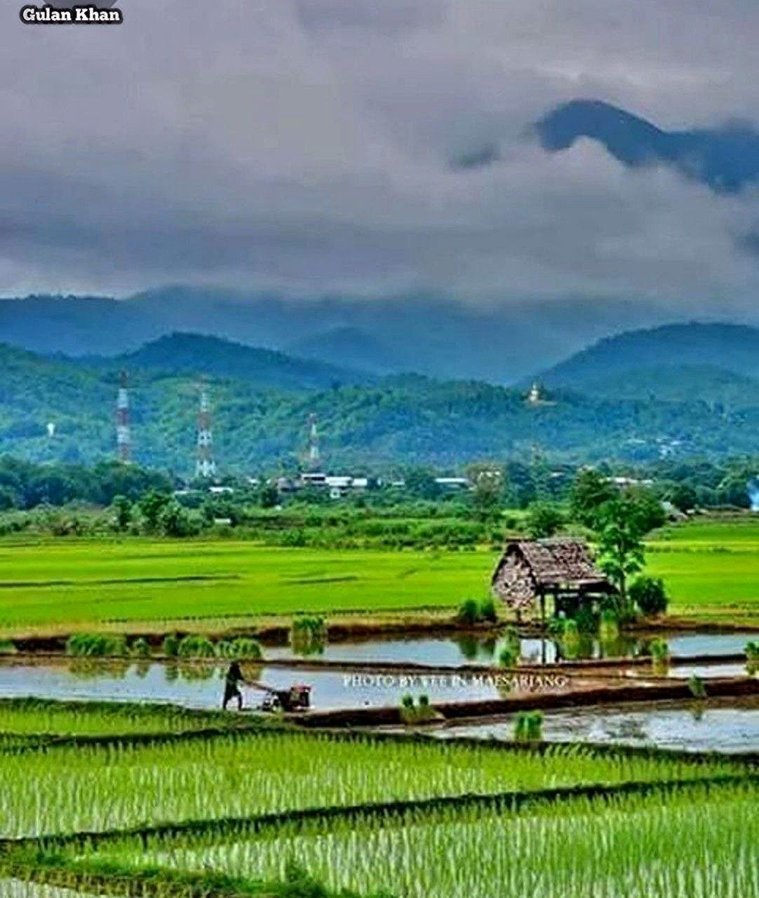 Pepani In 2020 Village Photography Nature Photography Agriculture Photography