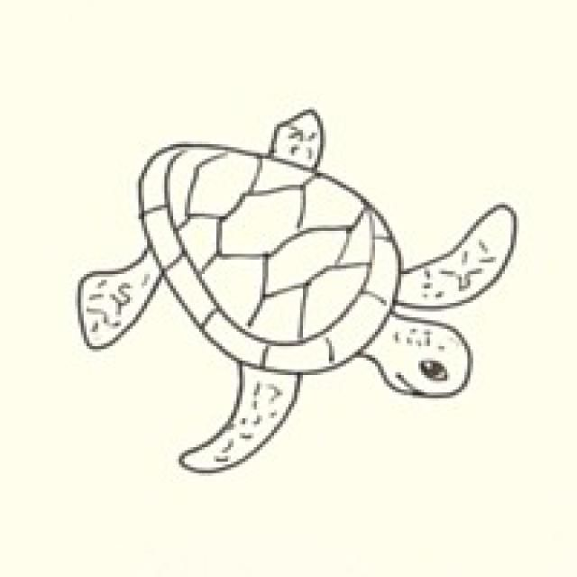 Draw a Sea Turtle in 3 Easy Steps   Turtle painting, Turtle sketch ...