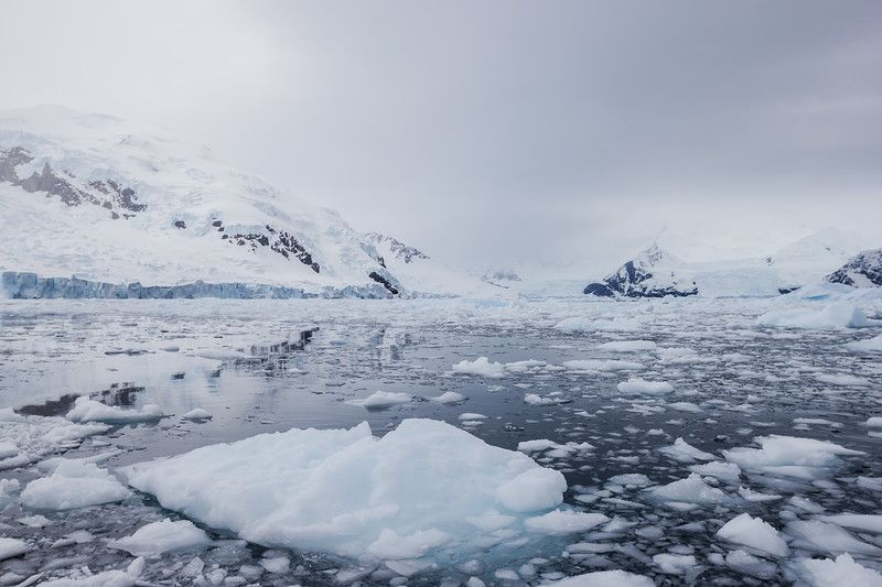 34 Antarctica Cruise Tips You Must Know Before You Go