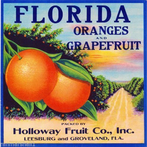 Palmetto Florida Moccasin Shoe Orange Citrus Fruit Crate Label Art Print