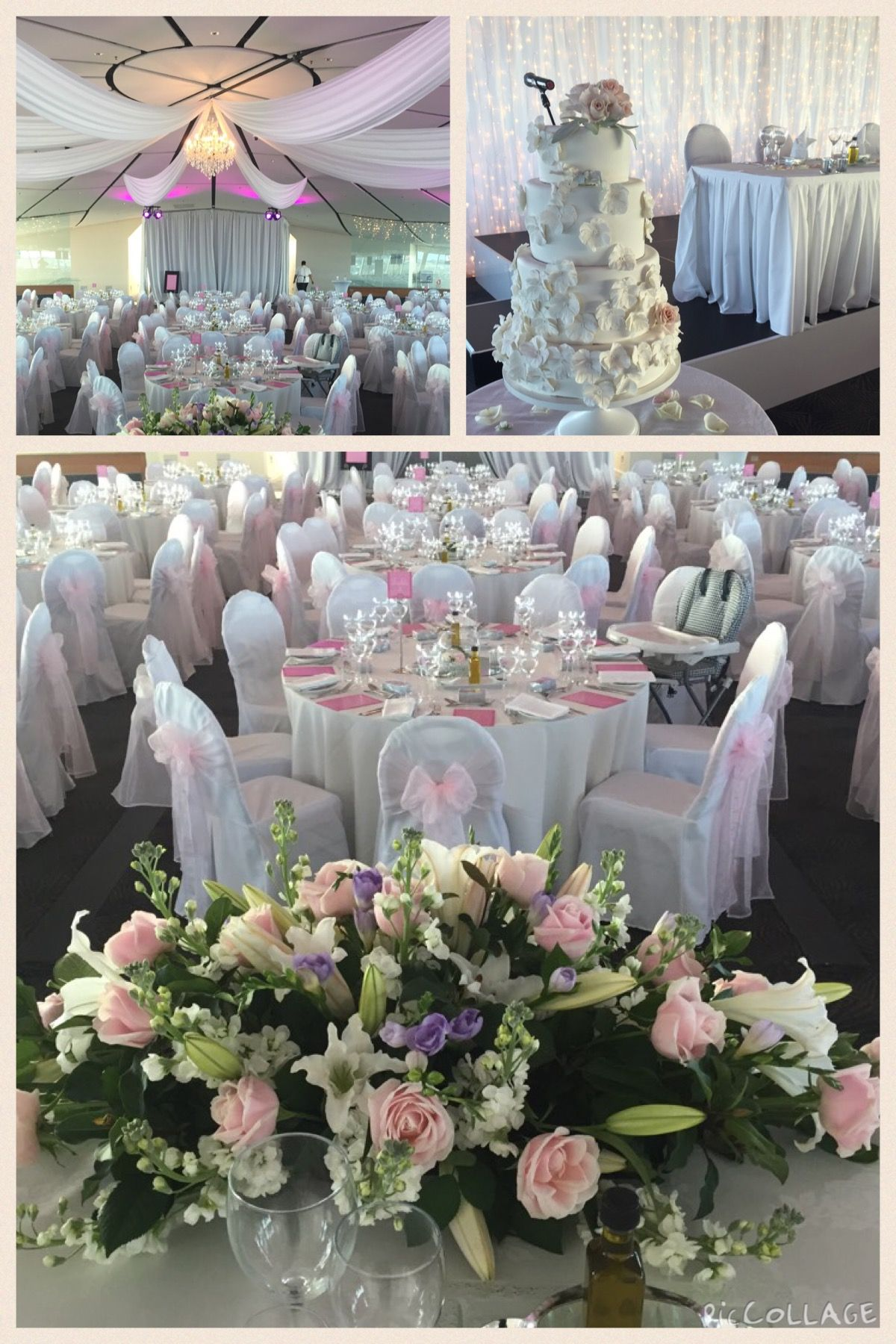 Pin by auckland museum on auckland museum weddings pinterest sitting proudly amongst the grounds of the domain auckland museum provides a spectacular venue for your next corporate function junglespirit Gallery