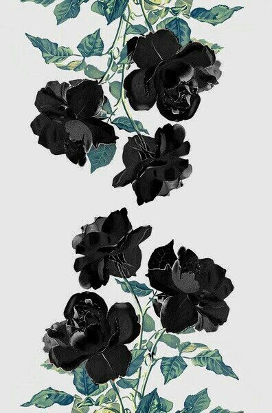 Download and use 72 aesthetic wallpapers for free. Pin de Fun 👻 Ghoul en Wallpaper | Flores oscuras, Rosas ...