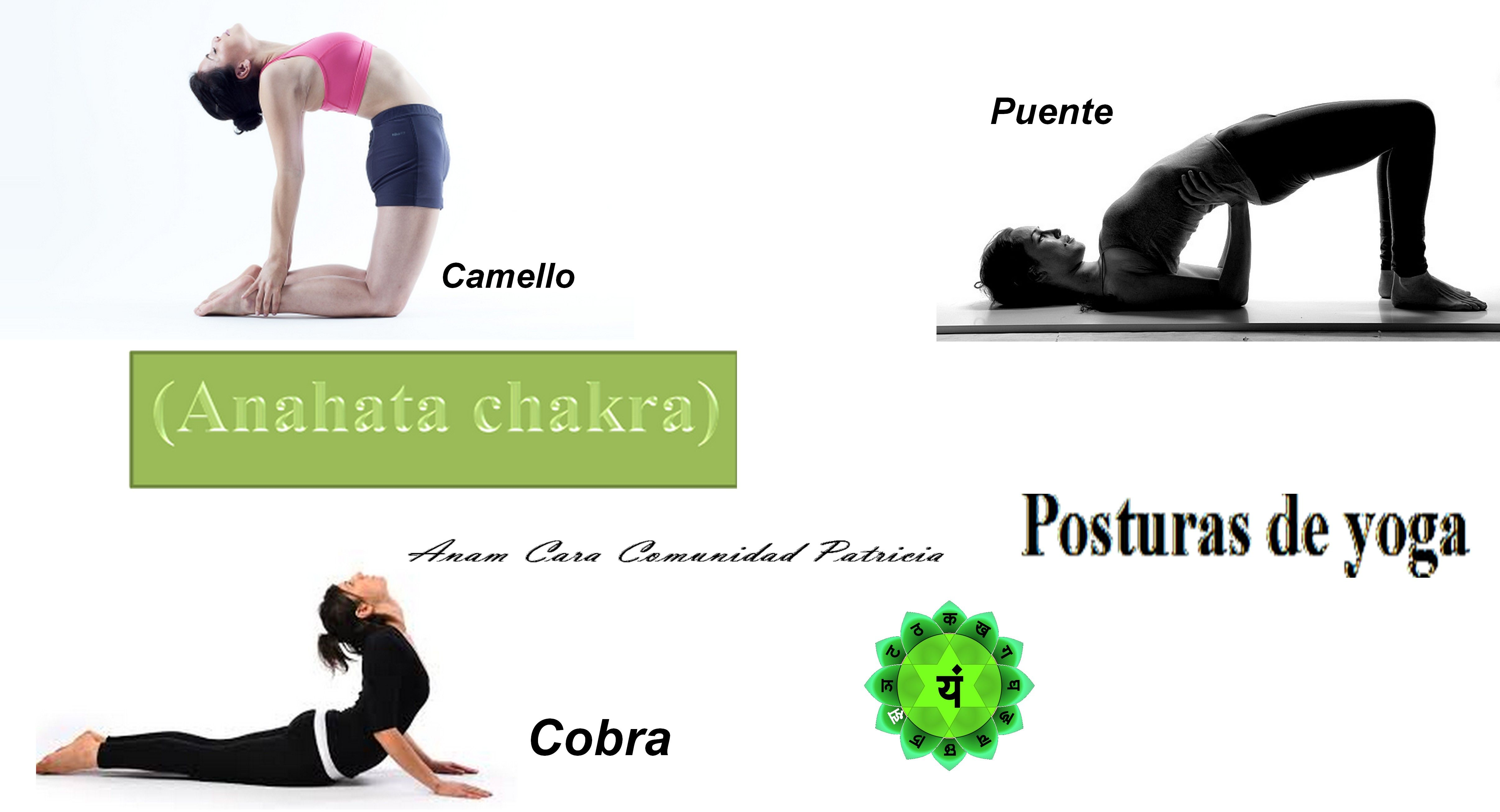 YOGA PARA EL CUARTO CHAKRA CORAZON ANAHATA | Chakras Los 7 Chakras ...