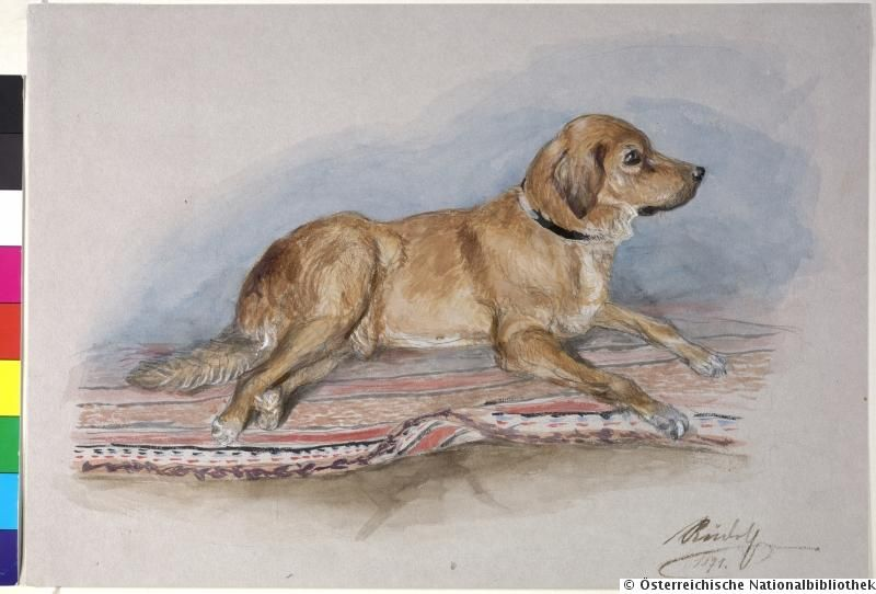 """Watercolor of Archduke Rudolf of Austria-Hungary, signed and dated: """"Rudolph in 1871""""."""