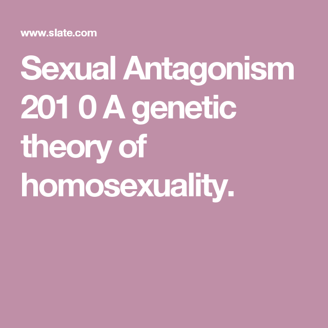 Nature theory of homosexuality