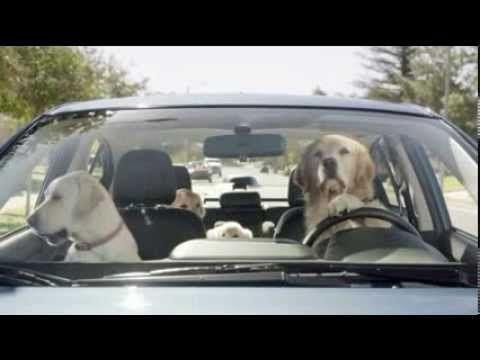 "▷ dog house | funny subaru commercial ""2014 super bowl ad"