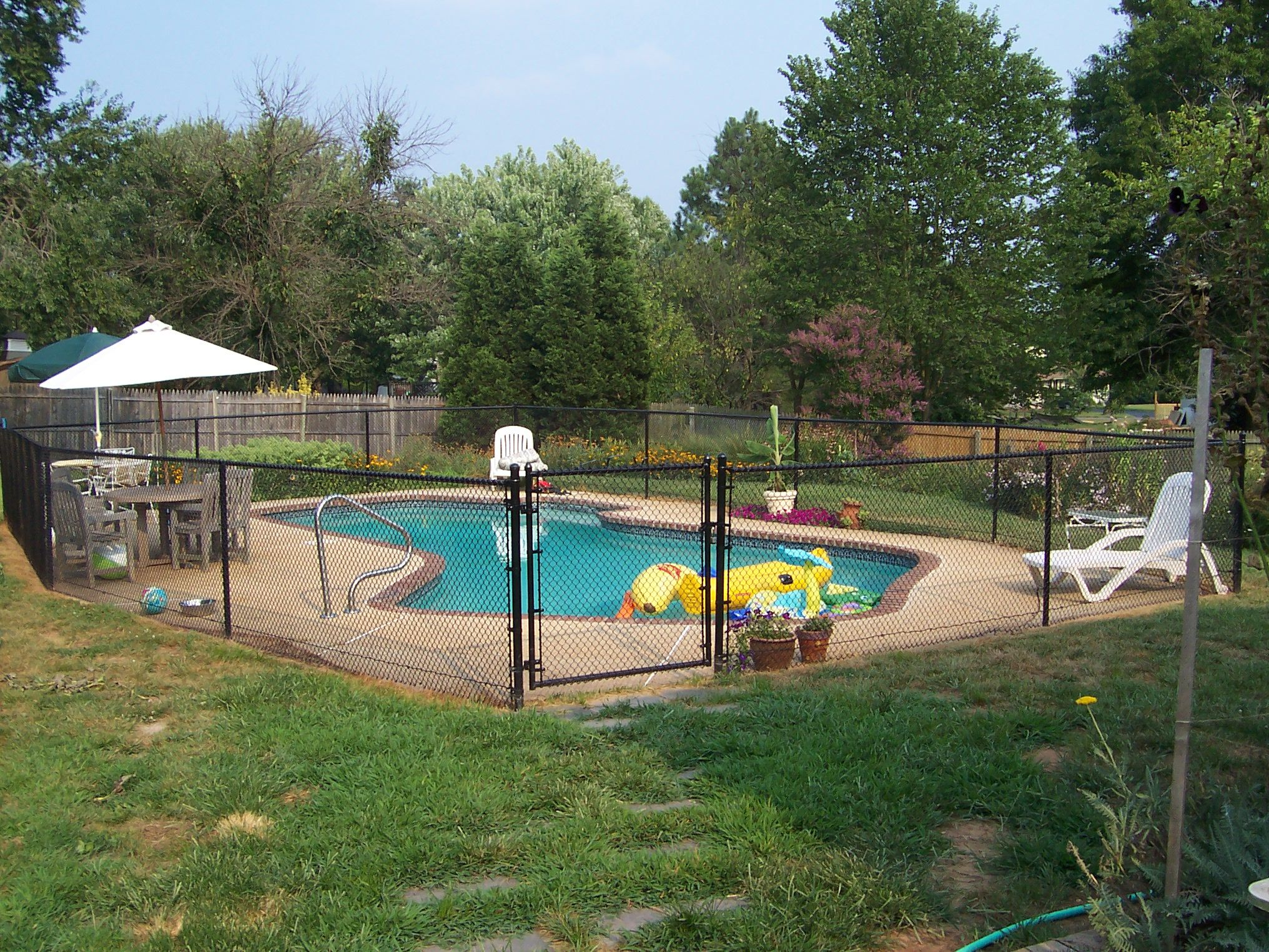 black chain link fence as a pool enclosure with single gate