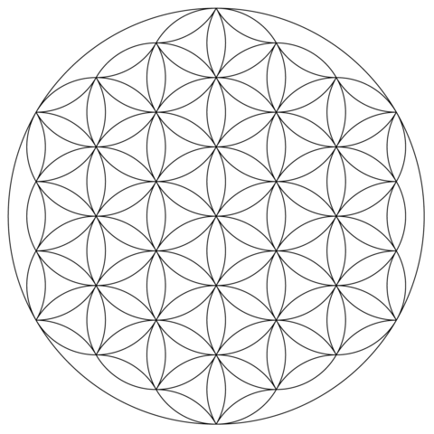 Mandala Fleur De Vie Coloriage Coloriage Adulte