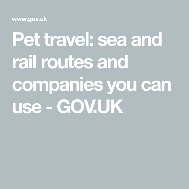 Pet Travel Sea And Rail Routes And Companies You Can Use Gov Uk Pet Travel Route Pets