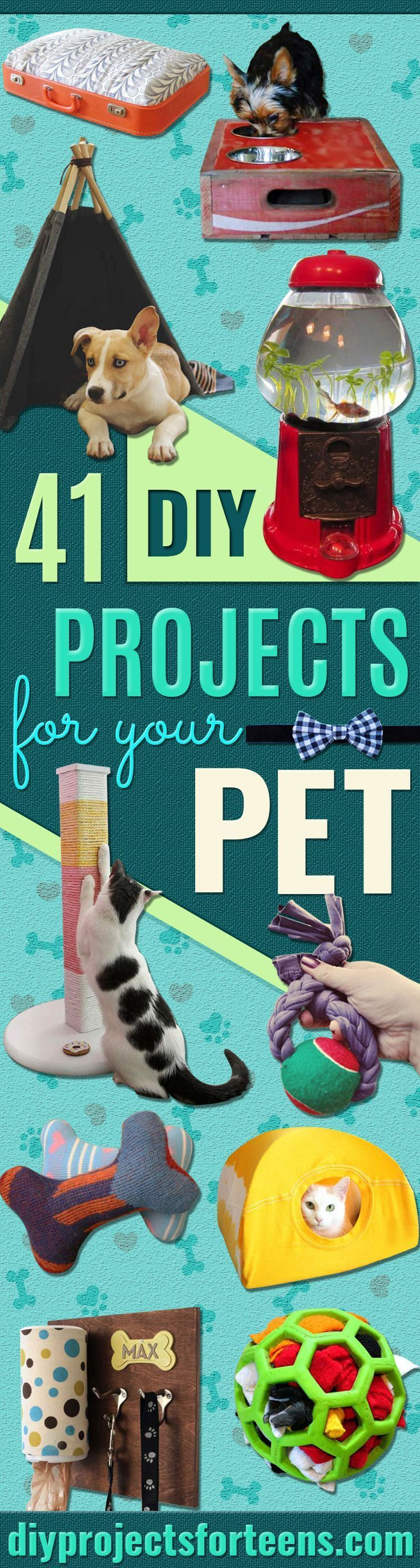 41 crafty diy projects for your pet  your pet diy cat
