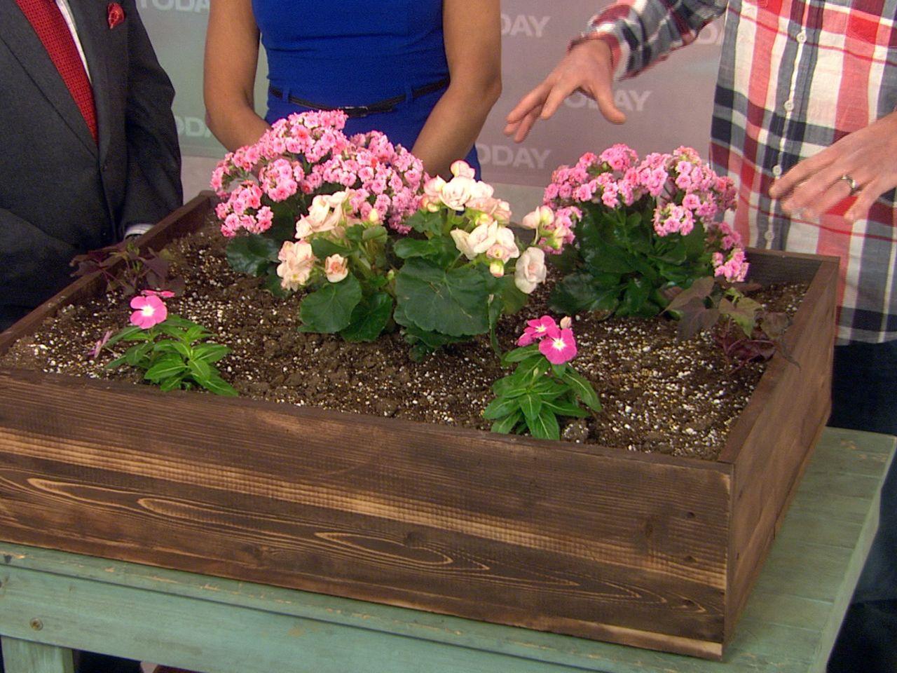 Spring has sprung! How to start your garden   DECOR INSPO ...