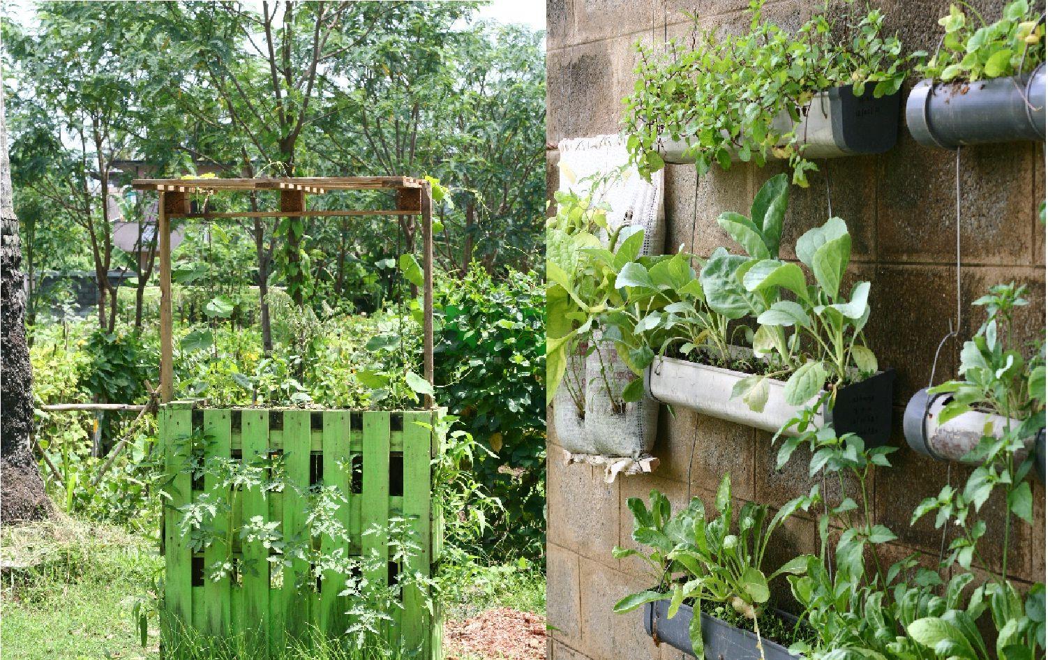 vertical-gardening | Garden | Pinterest | Gardens, Small homes and ...
