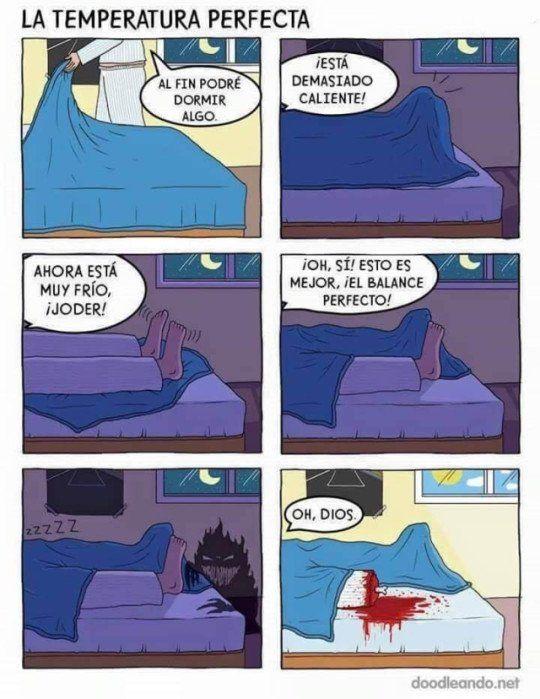 Buscando La Temperatura Ideal Para Dormir Funny Memes Memes Funny Pictures